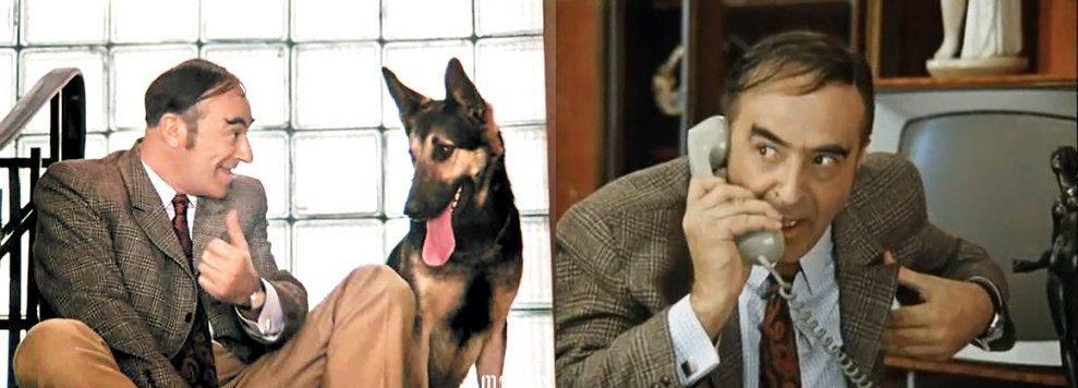 разговаривает с собакой